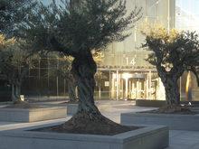 Oficinas de Cigna en Madrid